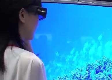 Sharp 3D LCD